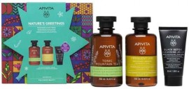 Apivita Set Natures Greetings Tonic Mountain Tea Αφρόλουτρο 250ml & Σαμπουάν Καθημερινής Χρήσης Χαμομήλι & Μέλι 250ml & Black Detox Cleansing Jelly 50ml