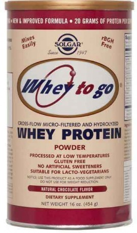 Solgar Whey to Go Protein Powder Γεύση Σοκολάτα, 454gr
